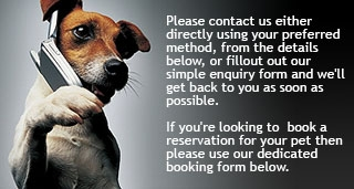 Get in touch with Derrings Kennels if you need any information or wish to book