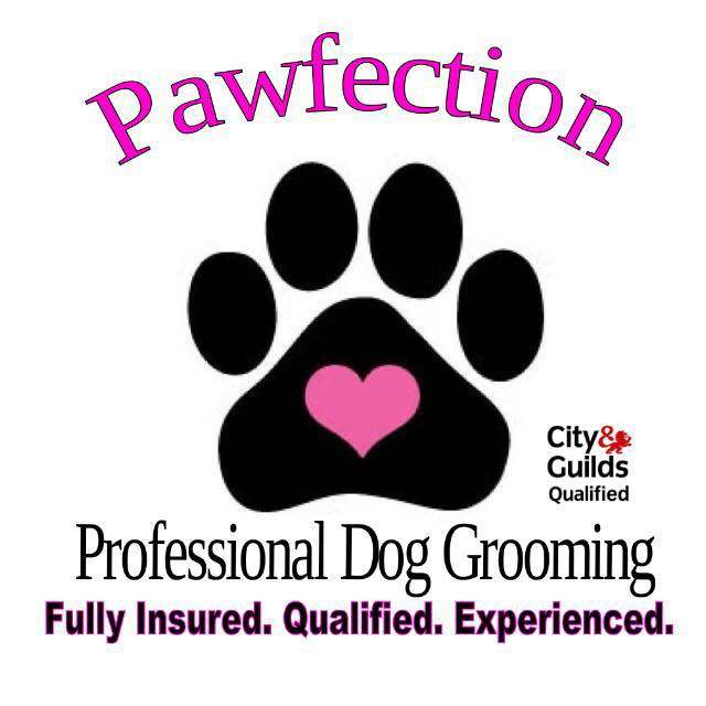 Pawfection Dog Grooming services at Derrings Kennels